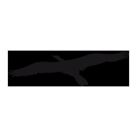 Sticker Aigle Adhésif pour Bateau