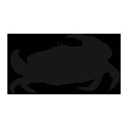 Sticker Crabe Adhésif pour Bateau