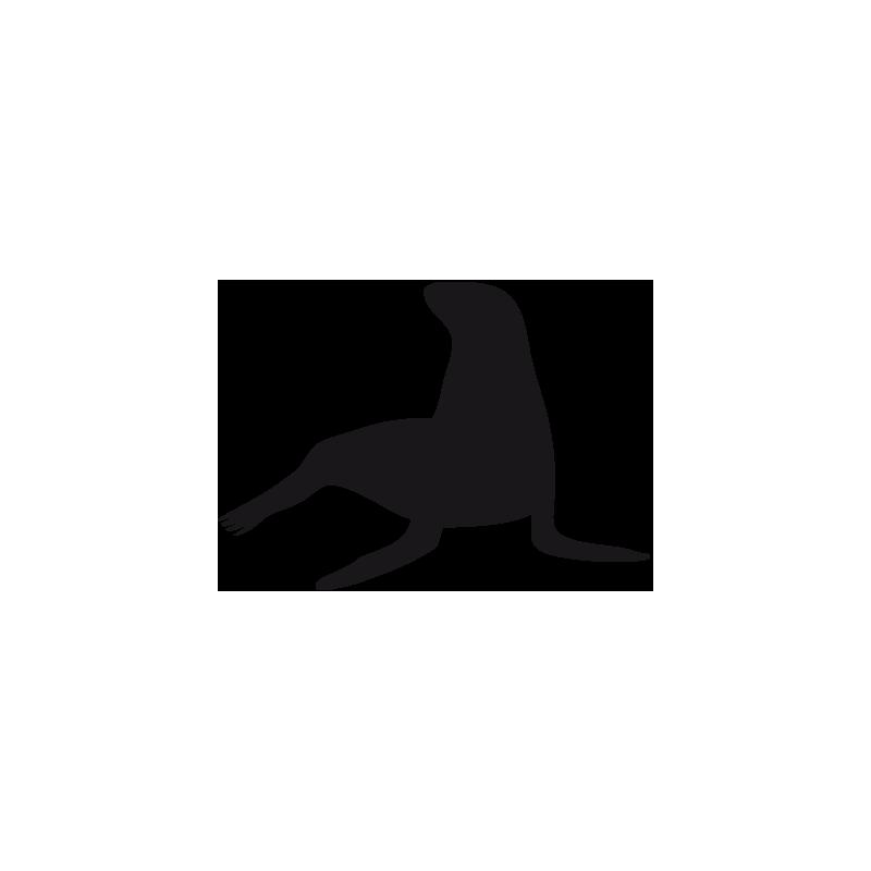 Sticker Phoque Adhésif pour Bateau