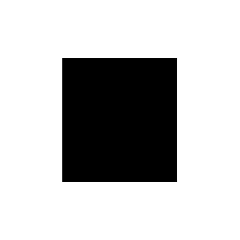 Sticker Dauphin adhésif pour bateau